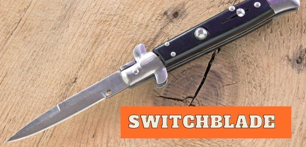 What Exactly is a Switchblade
