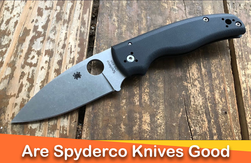 Are Spyderco Knives Worth the Money