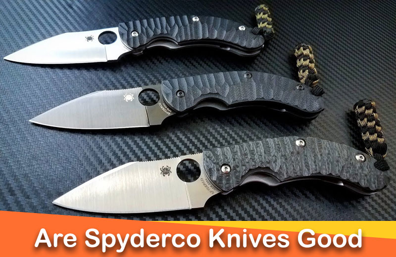 What is so special about Spyderco knives